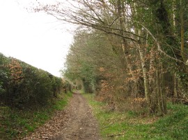 Old Shire Lane