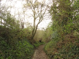 Path from Seymour Court Lane