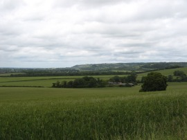 View from Swyncombe Downs