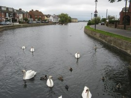 Emsworth Mill Pond
