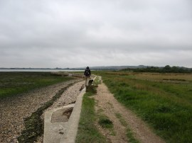 Solent Way, nr Langstone