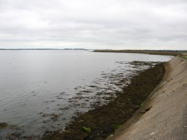 Sea Wall by Farlington Marshes