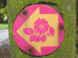 Dog Rose Ramble Way Marker