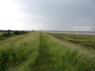 Sea wall besides Brightlingsea Reach