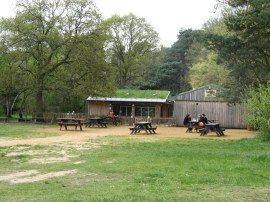 Cafe, Burnham Beeches Nature Reserve