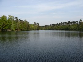 Blackpark Lake