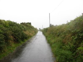 A rather damp moorland lane