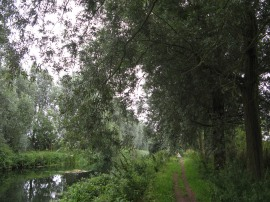 Chelmer and Blackwater Navigation