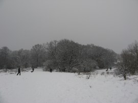 Epping Forest, nr the A406