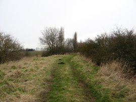 Track leading to Hall Lane